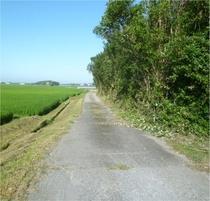 導入路の草刈り