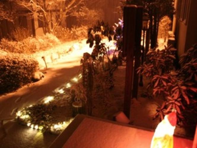 冬の散歩道。