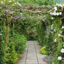ガーデン入り口のパーゴラは6月からはバラで包まれます★