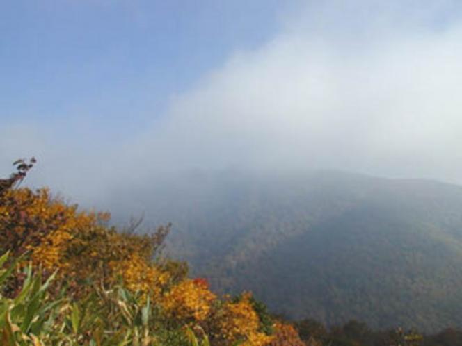 秋、山、紅葉-2