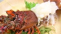 *オプション料理/イセエビのお造り。地元で獲れた海の幸をご提供♪