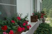 食堂の花飾り