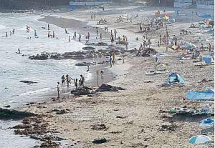 目の前が今井浜海岸
