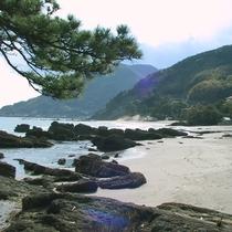周辺_目の前の海(2)