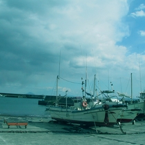 周辺_目の前の海(3)