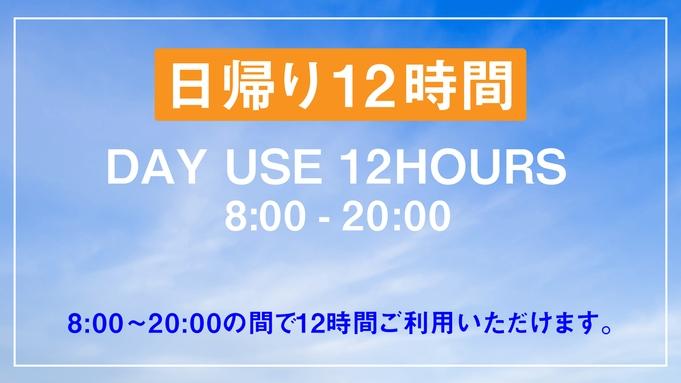 【日帰り12時間限定/1名様利用】デイユース・テレワークプラン【VOD付き】