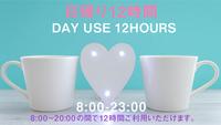 【カップル】デイユース・テレワークプラン【日帰り12時間限定/2名様利用】