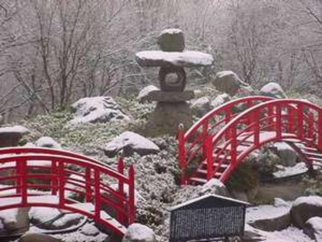 雪化粧した日本庭園