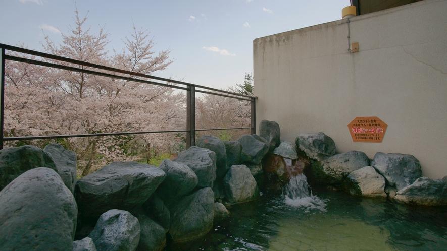 大浴場露天風呂。春は目の前に満開の桜をご覧いただけます。