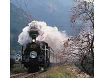 【大井川鉄道SL】 シーズンには美しい新緑や紅葉が見応えあり♪