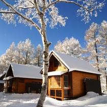 冬のどんぐり村