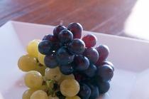 朝食も夕食にも新鮮な果物をたっぷりとお召し上がりください