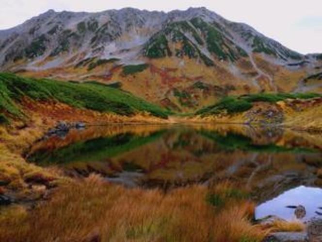 秋のみくりが池