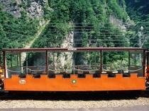 トロッコ電車(普通車両)