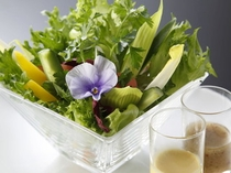 10種類のフレッシュサラダ