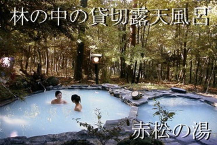 赤松の湯 モデル