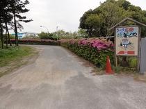 当館入口 坂道