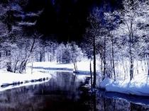 田代湿原霧氷