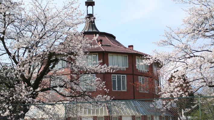 *【春の周辺風景一例】当館周辺には桜の名所がたくさん!地元ならではのおすすめスポットもございます。
