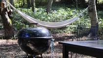 *【当館庭】*自然いっぱいのお庭。ハンモックでのんびり過ごすのもおすすめ。