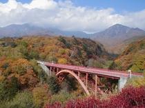 八ヶ岳山麓の秋.