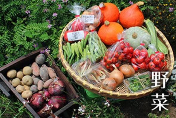 【コロナ対応★1日限定5室】隣の約5百坪の畑で有機栽培する無農薬野菜使用こだわりメニューの1泊2食付