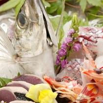地魚盛り合わせ 鯵アップ