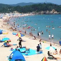 楽天プラン写真 千鳥ヶ浜ビーチ