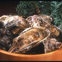 牡蠣 素材