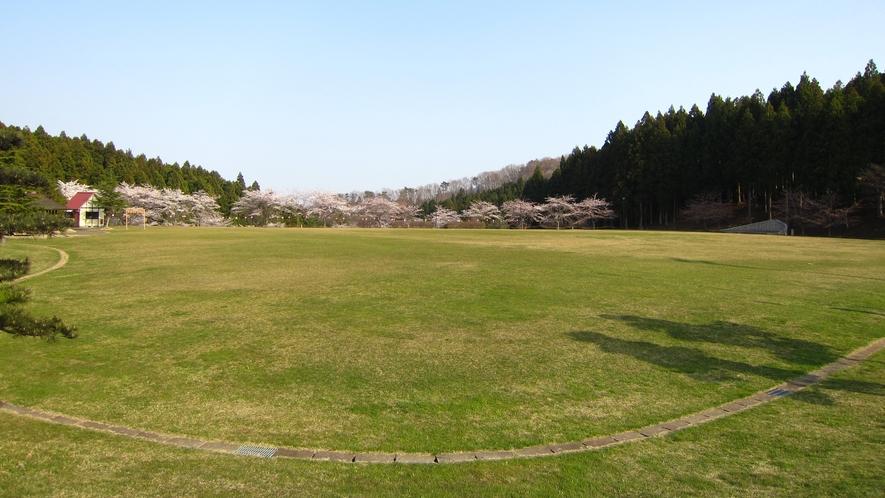 春の芝生広場