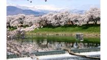 白石川堤・一目千本桜