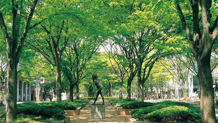 新緑の定禅寺通り