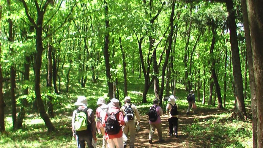 グリーンピア岩沼:散策コース