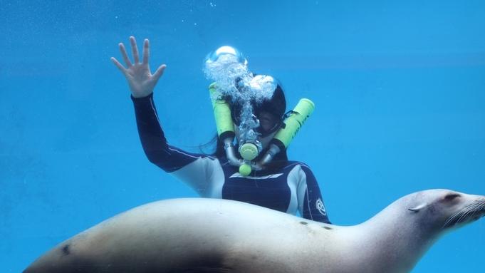 【下田海中水族館入場券付】イルカと遊べる人気の施設!お部屋食/庭園付露天風呂客室
