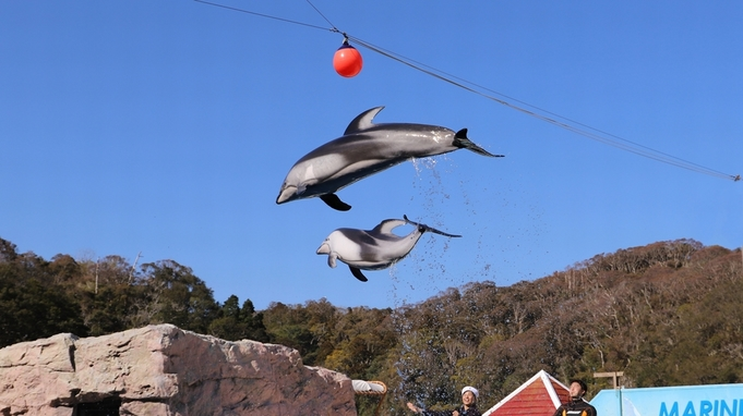 【下田海中水族館入場券付】イルカと遊べる人気の施設!お部屋食/庭園付露天風呂客室・特別室
