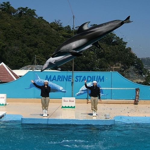 下田海中水族館一例