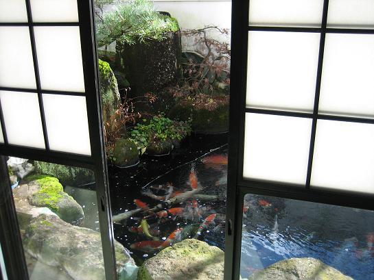 食堂からの庭の眺め