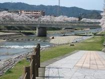 宮川へ散策