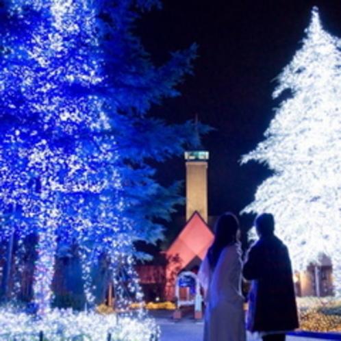 イルミ カップルと光のツリー