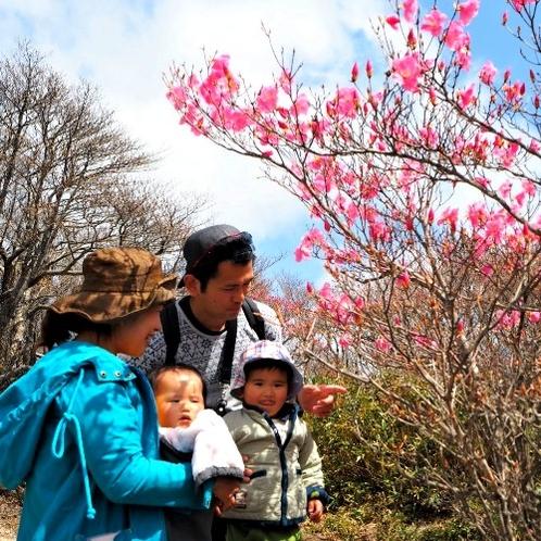 御在所岳の山頂を家族で散策