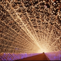 ☆なばなの里イルミネーション♪光のトンネル☆