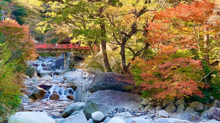 【紅葉】大石公園イメージ
