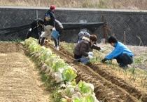 【学生旅行】農作業体験