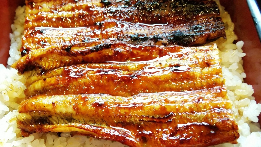 【しこくるり】【2食付/スタミナばっちり!】徳島県産うなぎを贅沢に食すプラン