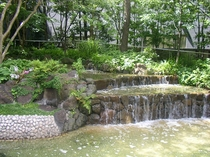 ホテル敷地内にある滝(水辺が涼しげ)