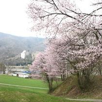 *風景(春)