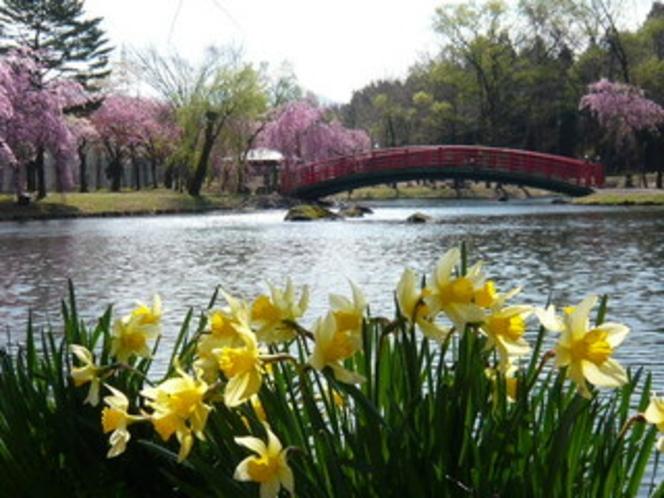 春の中央公園
