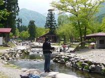 湯沢フィッシングパーク 緑の季節