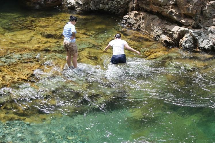 夏の川遊びスポット