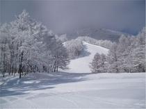 ゲレンデ雪景色